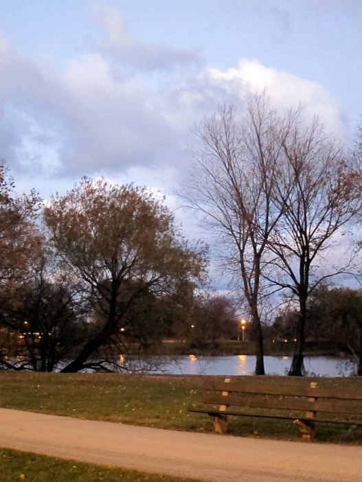 The North Pond at Dusk (Credit: Celia Her City)