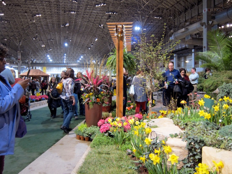 Banks of daffodils at the 2013 Chicago Flower and Garden Show, © 2013 Celia Her City