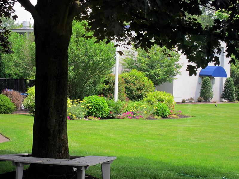 Hotel grounds, Concord, © 2013 Celia Her City