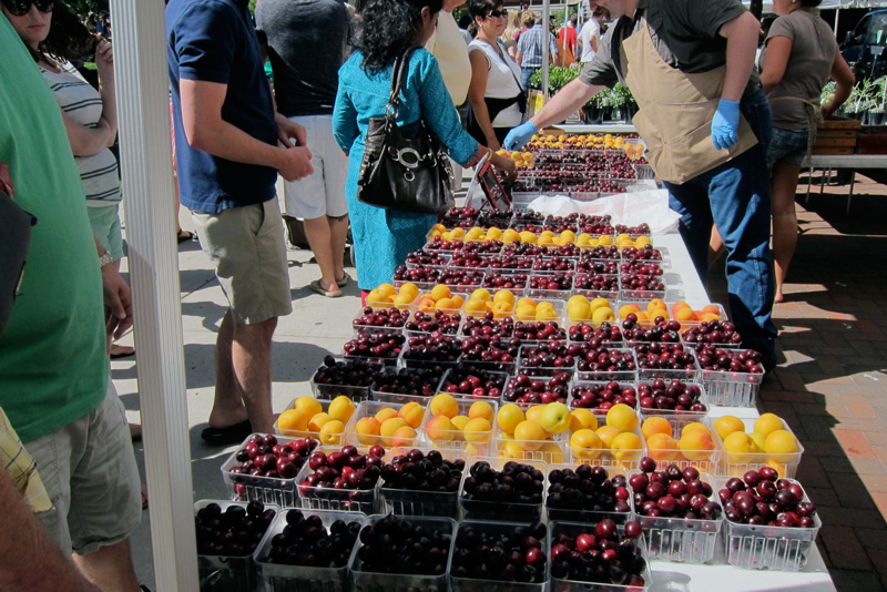 Apricots and cherries for sale at the Madison Farmers' Market